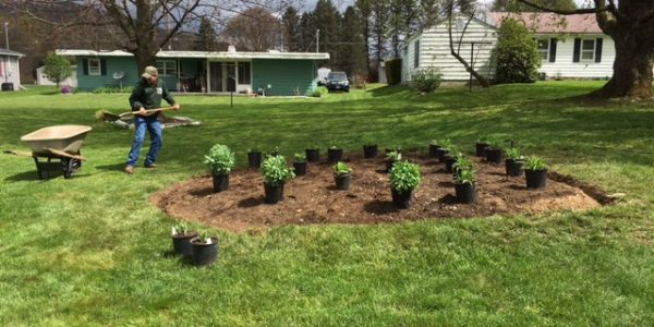Northwest PA Residential Landscape Plantings