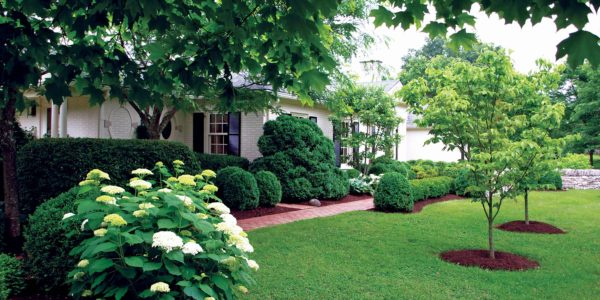 Northwest PA Landscape Maintenance