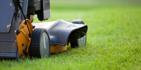 Warren County, PA Lawn Mowing & Maintenance