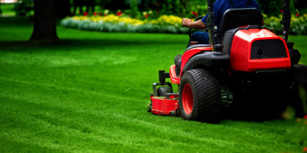 commercial & residential lawn mowing & maintenance