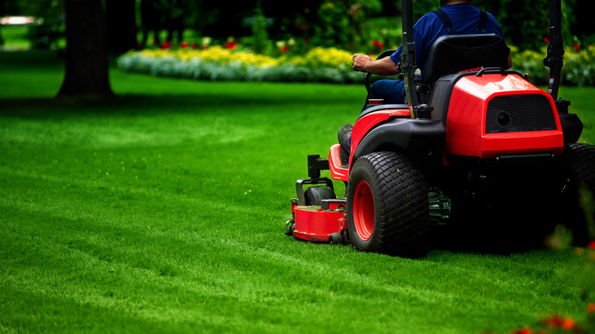 - Residential Lawn Mowing & Maintenance Snell Landscape Services