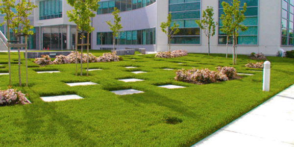 Commercial Landscape Maintenance Warren County, PA